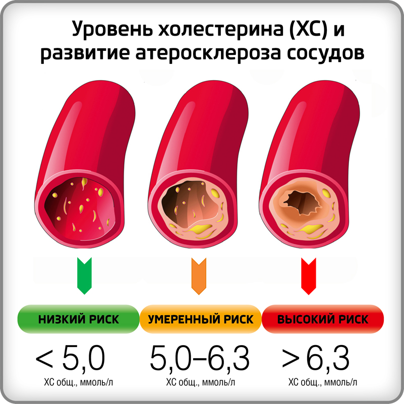 высокий холестерин после родов