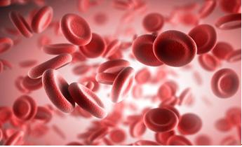 На что сдать анализ крови при длительном кашле
